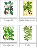 Tree Matching Cards (German)