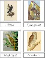 Bird Matching Cards (German)